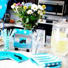 Baby Shower Hosting